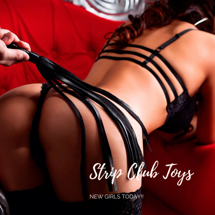 Strip Club Toys NEW